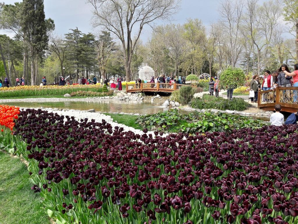 aprile si svolge l'annuale Festival Internazionale del Tulipano di Istanbul